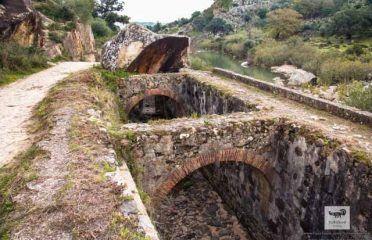 EL Cao (El Canal de Artilleria de Carlos III)