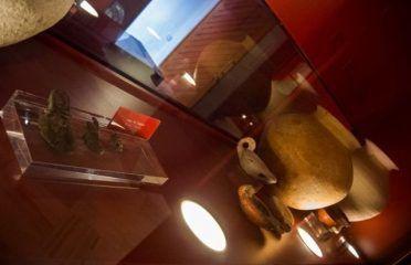 Museo Arqueológico de Espera