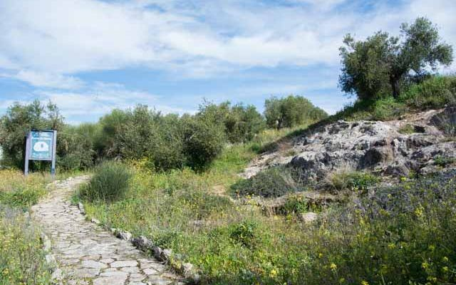 Necropolis Fuente de Ramos