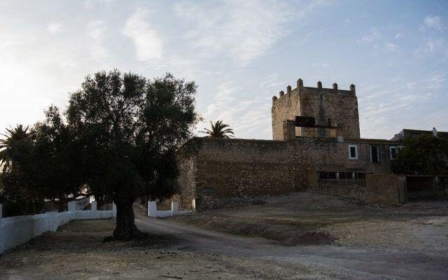 Castillo y Baños de Gigonza